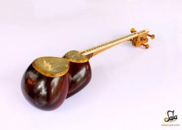 Tar Persian long-necked lute
